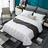 Globon Texcote Nano-Treated White Goose Down Comforter Queen Lightweight Summer, 400 Thread Count Hypoallergenic 100% Cotton Down-proof Shell, 14OZ, 700 Fill Power,With Corner Tabs, Solid White