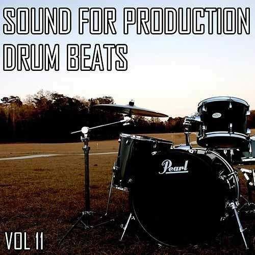 (Beats Drums Percussion Vol 11)