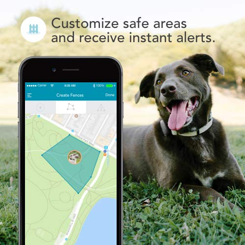 Findster Duo+ Pet Tracker - GPS Tracking Collar for Dogs and Cats & Pet Activity Monitor - Free of Monthly Fees