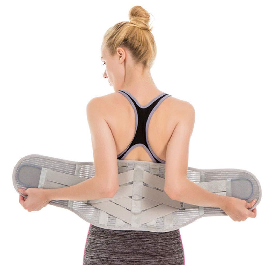 Lumbar Belt, Lower Back Brace Support Belt Breathable Mesh Panels Dual Adjustable for Exercise Lumbar Correction,M DONGBALA