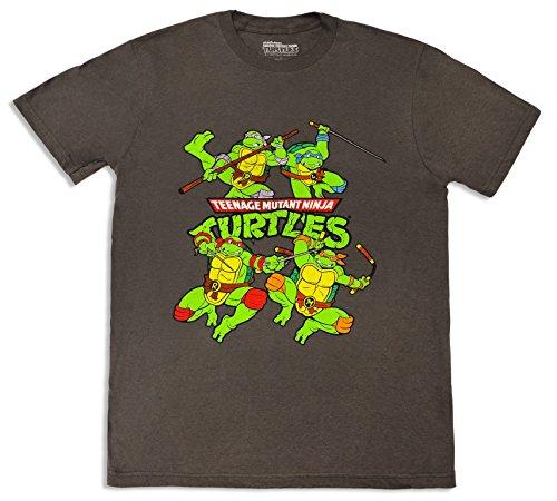 Teenage Mutant Ninja Turtles Group T-shirt, Charcoal Grey - Large