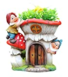 SINTECHNO SNF91187-2 Cute Gnomes with Mushroom House Flower Planter For Sale