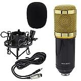Ocr TM BM-800 Uni-directional Professional Studio Broadcasting & Recording Condenser Microphone Mic with Shock Mount Black