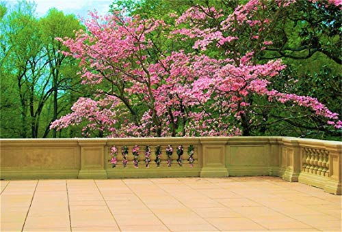 CSFOTO 5x3ft Background Terrace Pink Flower Trees Photography Backdrop House Rooftop Blooming Flower Pink Spring Green Trees Leisure Holiday Vacation Tour Photo Studio Props Polyester Wallpaper