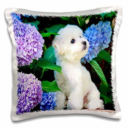 3dRose Adorable Bichon Frise Puppy Among Hydrangeas - Pil...