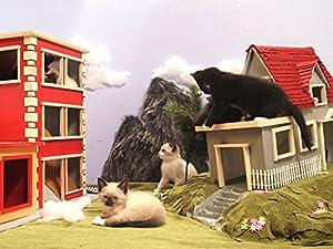 Kitten Town