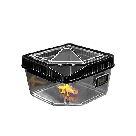 Reptile Box - Caja de Transporte y alimentación de terrario Repelente con Tapa de Apertura ventilada
