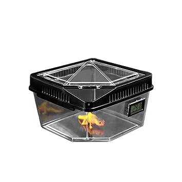 Reptile Box - Caja de Transporte y alimentación de terrario ...