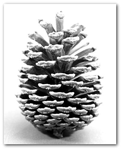 pine cone print - 4