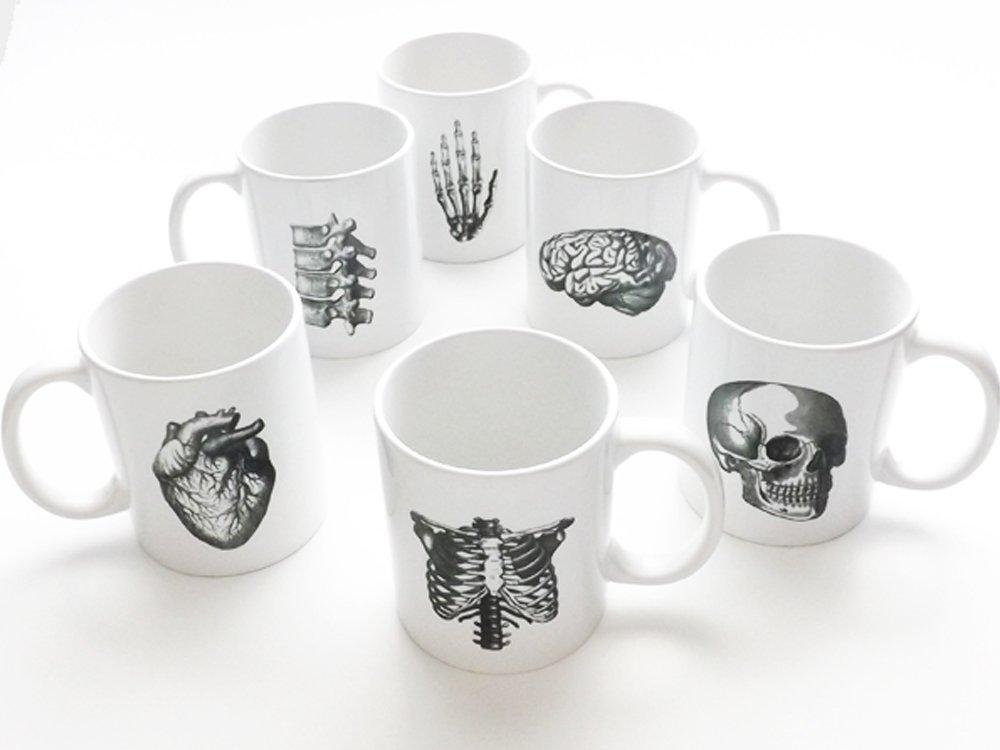 six Anatomy coffee Mugs gift set skull ribcage anatomical heart brain vertebrae hand doctor nurse