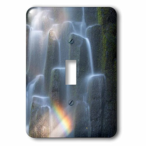 Rainbow Over Waterfall (3dRose lsp_251343_1 Oregon, Proxy Falls. Waterfall Rainbow Over Basalt Columns. Single Toggle Switch)
