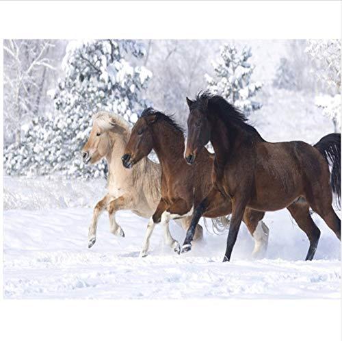 CZYYOU CZYYOU CZYYOU DIY Digital Malen Nach Zahlen Schnee Pferd Ölgemälde Wandbild Kits Färbung Wandkunst Bild Geschenk - Ohne Rahmen - 40x50cm B07PMQJ94T | Elegant  221c89
