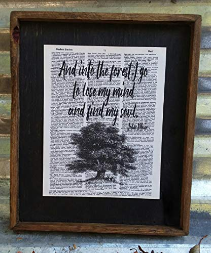 And Into the Forest I Go to Lose My Mind and Find My Soul by John Muir - Wooden Sign -