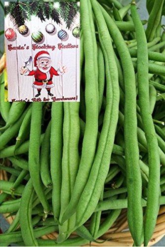 Homegrown Bean Seeds, 80, Kentucky Pole Organic