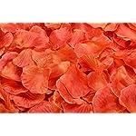 La-Tartelette-Silk-Rose-Petals-Wedding-Flower-Decoration-2000-Pcs-Orange-Red