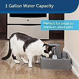 PetSafe Drinkwell 1 gallon Dog & Cat Water