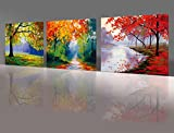 Nuolan Art -canvas Prints, 3 panel Wall Art oil Paintings Printed Pictures Stretched for Home Decoration -P3L3040-005 Picture
