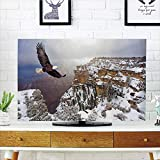 """iPrint LCD TV dust Cover Strong Durability,Wildlife Decor,Aerial View of Bald Eagle Flying in Snowy Grand Canyon Rocky Arizona USA,White Brown,Picture Print Design Compatible 42"""" TV"""