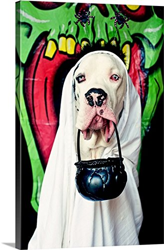 [Canvas On Demand Premium Thick-Wrap Canvas Wall Art Print entitled Great Dane wearing a ghost costume, carrying a Halloween bucket] (Animal Costumes Made From Recycled Materials)