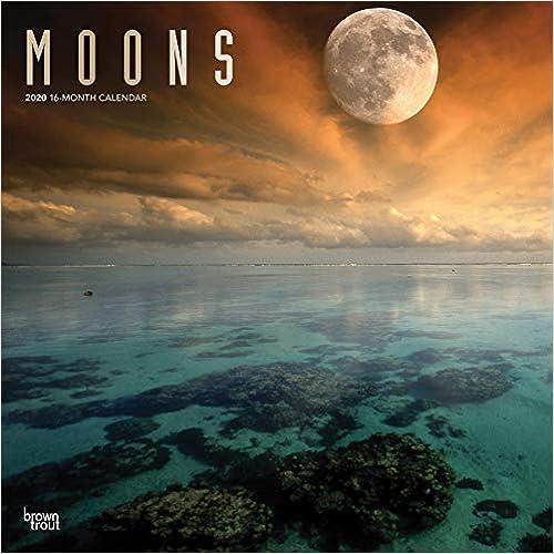 Livre pdf gratuit a telecharger en francais Moons 2020 Calendar: Foil Stamped Cover