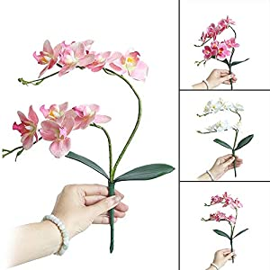 Artificial Dried Flowers - 4 Color Artificial Butterfly Orchid Branch Silk Flower Pink Phalaenopsis Bouquet Wedding Valentine - Dried Flowers Artificial 15