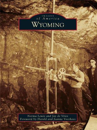 Wyoming (Images of America) - Burlingame Avenue