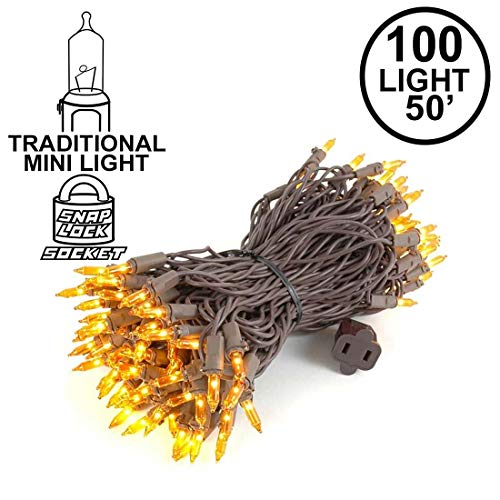 Novelty Lights 100 Light Amber Christmas Mini String Light Set, Brown Wire, Indoor/Outdoor UL Listed, 50' Long (Tree Amber Lights Colored Christmas)