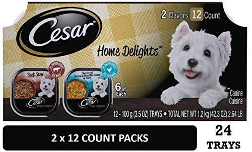 Cesar Gourmet Wet Dog