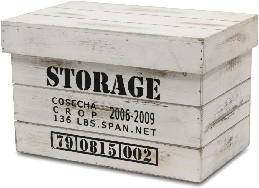 BUAR ARTESANOS Caja Storage Blanca con Tapa (40x25x25 cm.): Amazon ...