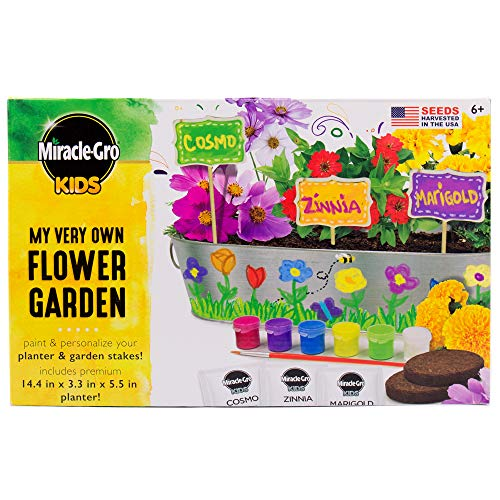 Miracle-Gro Kids My Very Own Flower Garden by Horizon Group USA ()