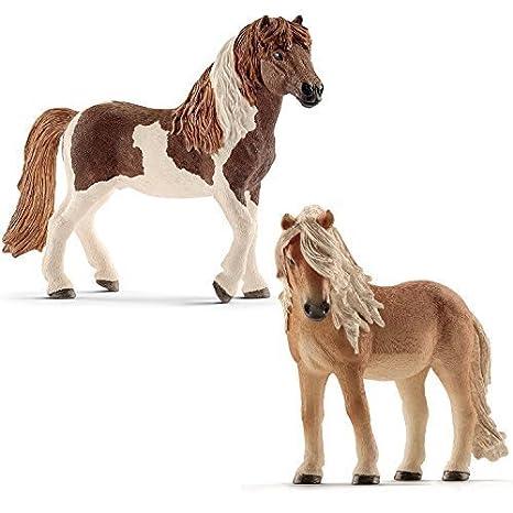 Pony incontri Profilo di incontri virile