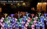 SOLARMKS Garden Solar Lights Outdoor Decorative