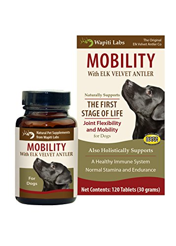 Wapiti Labs Dog Mobility 120 Count Tablet