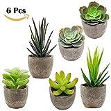 Juna Creations Succulent Plants & Succulent Planter 6 pc mini Fake Flowers Decorative Assortment Aloe Cactus