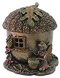 2.5 Inch Hand Painted Resin Fairy Acorn House Trinket Box, Bronze