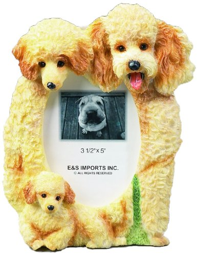 Frame Poodle (Apricot Poodle  Picture Frame Holds Your Favorite 3 x 5 Inch Photo,  A Hand Painted Realistic Looking Apricot Poodle  Family Surrounding  Your Photo. This Beautifully Crafted Frame is A Unique Accent To Any Home or Office. The Apricot Poodle  Picture Frame Is The Perfect Gift For Apricot Poodle  Owners And Lovers!)