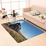 Sophiehome skid Slip rubber back antibacterial Area Rug hamburg mn october the milwaukee road steam train on its fall colors tour from 504950974 Home Decorative