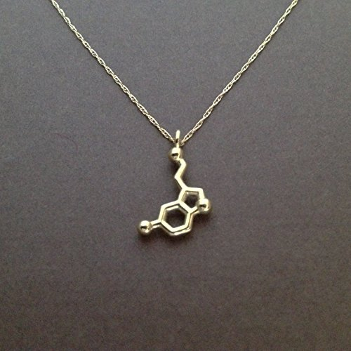 Petite Serotonin Necklace in solid 14K yellow gold
