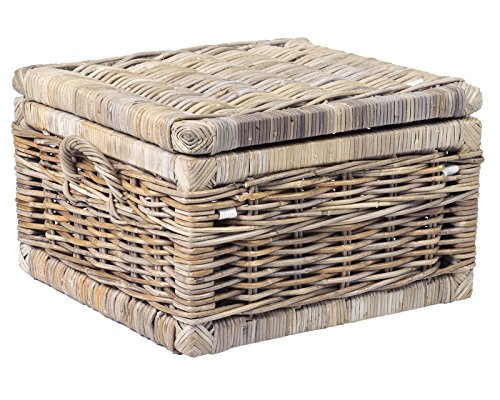 Treasure Chest Rattan (East at Main Viola Brown Rattan Square Storage Trunk, (31