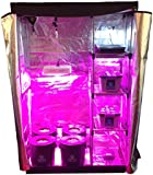Hydroponic Nursery u0026 Grow Room - Complete Grow Kit - Grow Tent - LED Grow System  sc 1 st  Amazon.com & Amazon.com : Complete Two Room Perpetual Grow Tent Kit w/600W ...