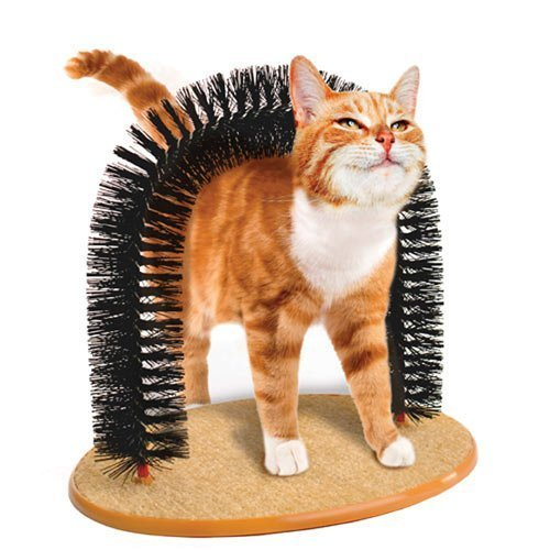 Foodie Puppies Cat Perch Scratcher Pet Toy Arch Self-Groomer and Massager Catnip Cat Grooming - Color May Vary (Arch)