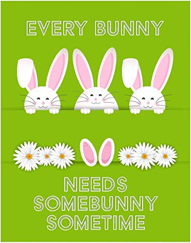 Every Bunny Needs Somebunny Sometime Quote Fine Art Rabbit Print - 11x14 Unframed Art Print - Great Gift. Looks Great In Dorm, Bedroom, Game Room, Nursery, Boy or Girls Room. Poster Decor Under $20