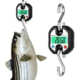 Hanging Scale, RISEPRO Digital Professional Hanging Scale W/ Accurate Sensor for Luggage Fishing Construction Hunting Balance Pocket Crane 150kg W/ Backlight RP-C100