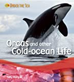 Orca and other Cold Ocean Creatures, Sally Morgan, 1595665676