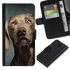 EuroCase - Samsung Galaxy S4 IV I9500 - weimaraner portrait muzzle grey dog - Cuero PU Delgado caso cubierta Shell Armor Funda Case Cover