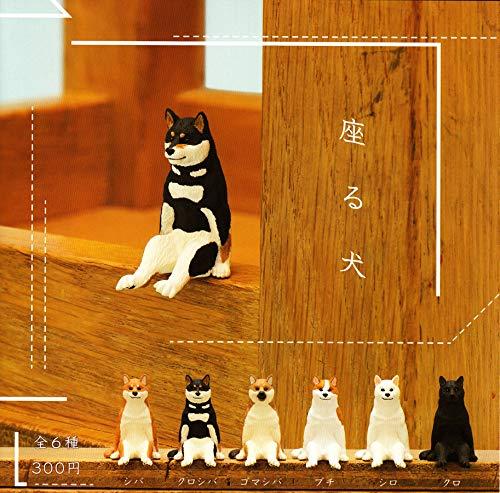 앉아 있는 강아지 개 [전6종 세트(풀 무료 초대권)]