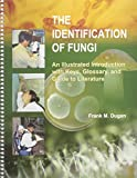 Identification of Fungi 9780890543368