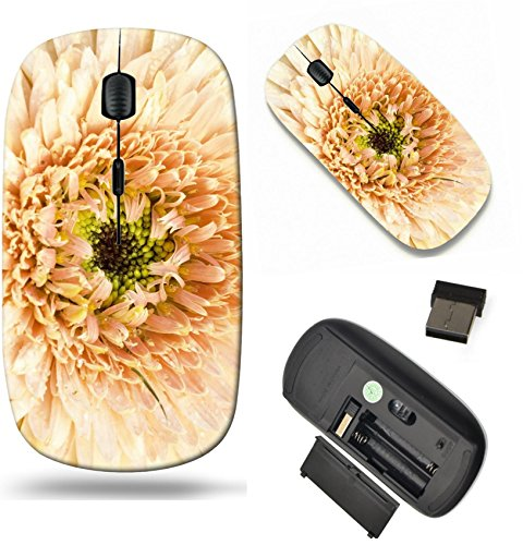 MSD Wireless Mouse Travel 2.4G Wireless Mice with USB Receiver, Noiseless and Silent Click with 1000 DPI for notebook, pc, laptop, computer, mac book design: 37935547 Gerbera is very popular - Most Popu
