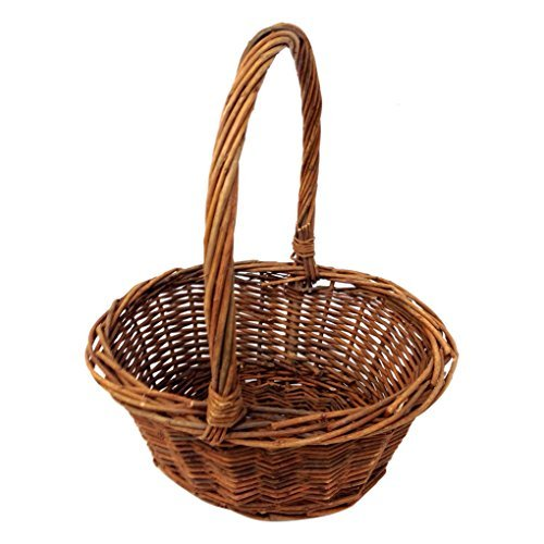 Royal Imports Oval Shaped -SMALL- Willow Handwoven Easter Basket by 9″(L) x7(W) x3.5(H) (10.5″(H) w/ handle) braided rim – with Plastic Insert