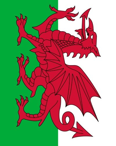 Welsh Flag Notebook: College Ruled Writer's Notebook for School, the Office, or Home! (8 x 10 inches, 120 pages) pdf